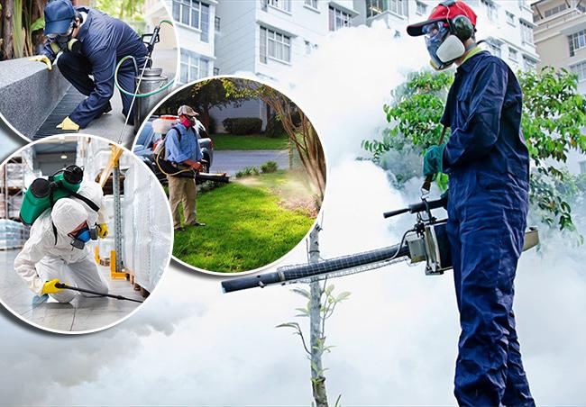 Công ty diệt côn trùng Minh Đức